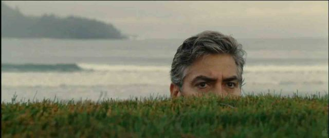 The Descendants (Alexander Payne, 2011)